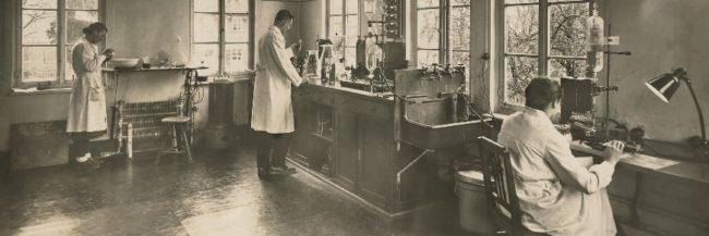 Weleda německo-švýcarská přírodní kosmetika s tradicí od roku 1921